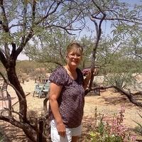 Notary Public in Vail, Arizona 85641, Toni Hansen