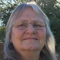 Notary Public in Waddell, Arizona 85355, Debbie Kelly
