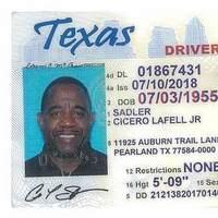 Notary Public in Houston, Texas 77288, CICERO Sadler
